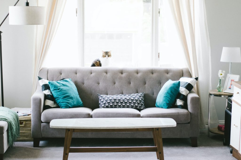 staged living room with couch
